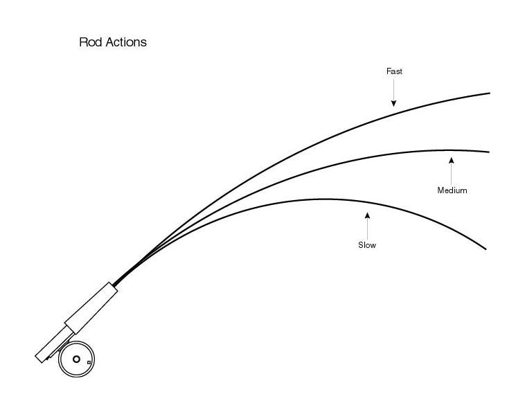 Basic fly fishing rod reel line and leader information for Fly fishing supplies near me