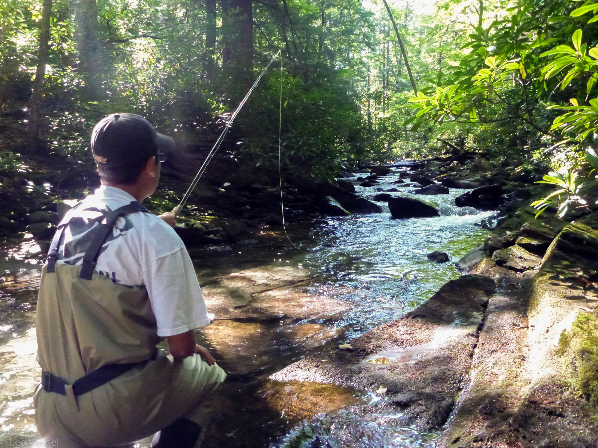 Fly fishing southwestern pennsylvania linn run pa fly guide for Trout fishing pa